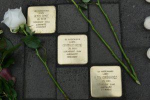 Fotos von drei Stolpersteinen mit weißen Rosen